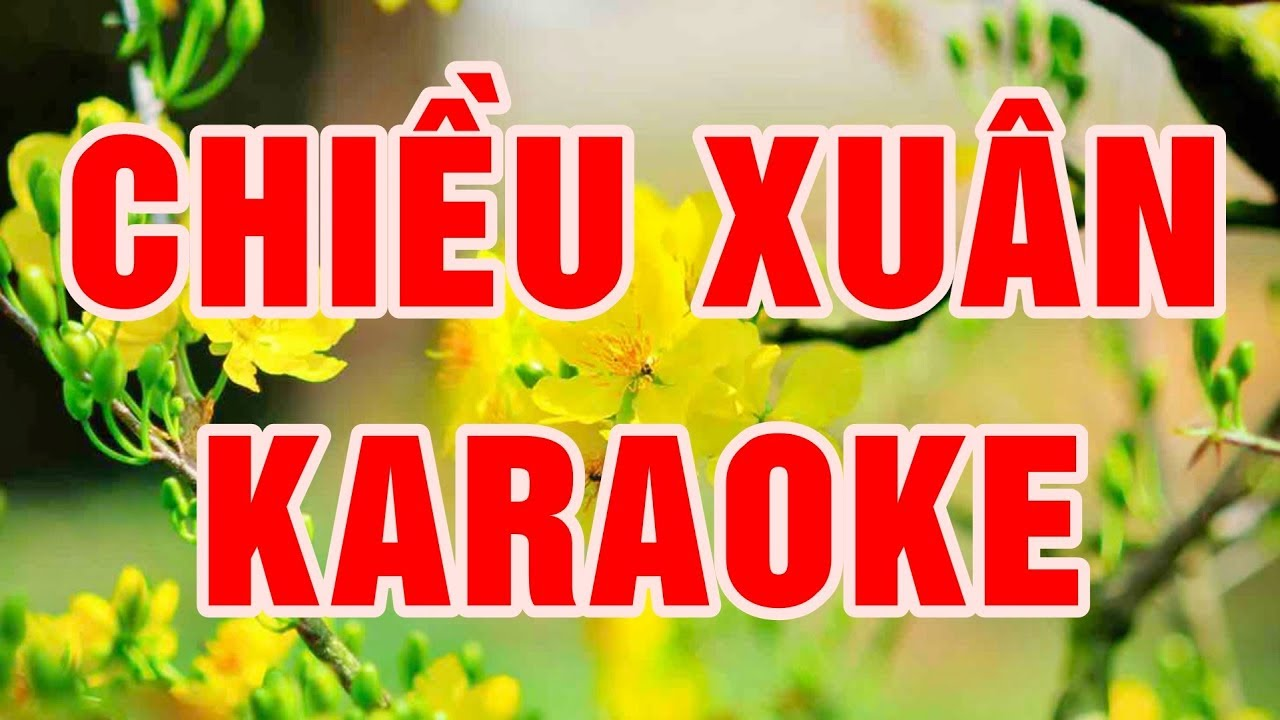 Chiều Xuân Karaoke Remix beat chuẩn Nhạc Sống Thanh Ngân