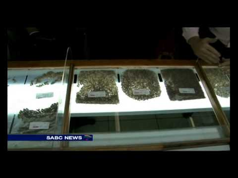 Zimabawe diamonds under the hammer at local diamond auction
