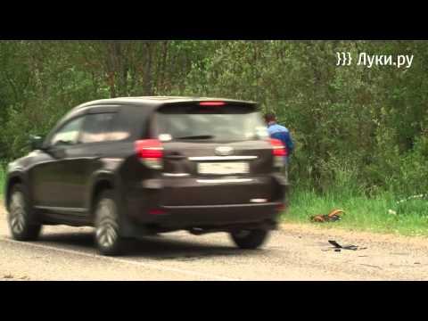 Два человека погибли в ДТП в Великолукском районе