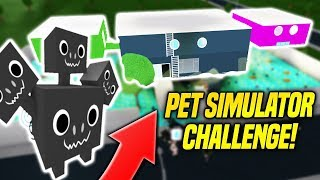 I Made The RAREST Pet From PET SIMULATOR In BLOXBURG! Pet Simulator Challenge (Roblox)
