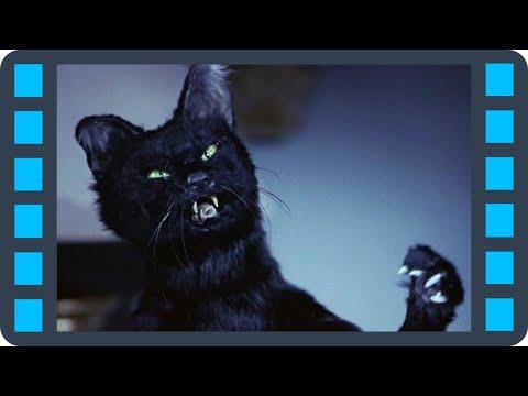Бешенная киса — «Очень страшное кино 2» (2001) сцена 3/7 QFHD