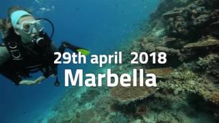 Ironman marbella 2018