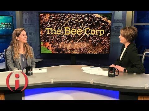 IIBTV: Women in Tech - The Bee Corp