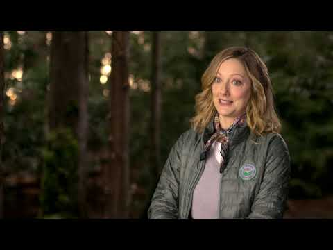 Judy Greer On Playing With Fire