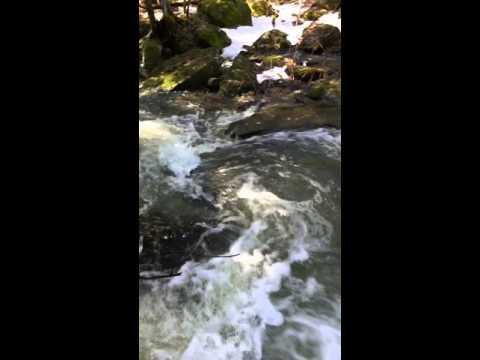 Rancho Relaxo Falls Spring 2016 - II