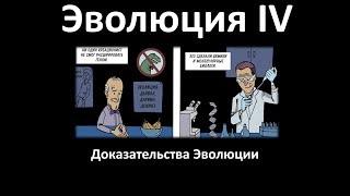 15.4 Эволюция часть IV (9 или 10-11 класс) - биология, подготовка к ЕГЭ и ОГЭ 2018