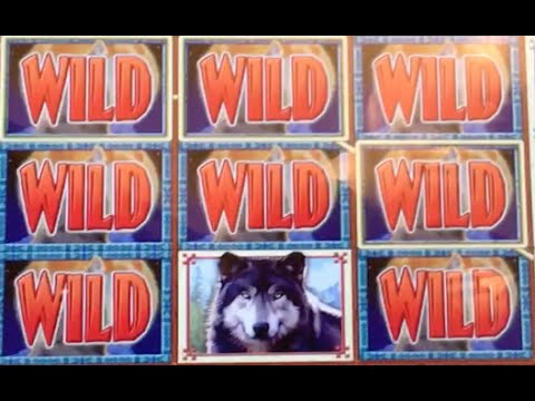 Video slot machines wolf run gambling n diction king of queens episode