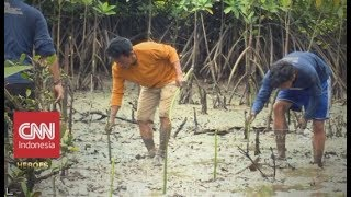 Agus Bei: Melestarikan Mangrove untuk Kehidupan  CNN Indonesia Heroes