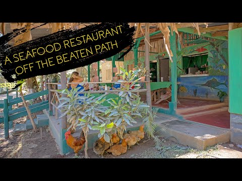 A Seafood Restaurant 🦐 Off The Beaten Path - Costa Rica 🇨🇷