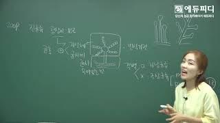 [에듀피디] 위생사 인강 추천 실기 시험 식품위생학 과…