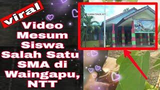 Viral ‼️ Video Mesum Oknum Pelajar SMA Di Waingapu #pelajarsmawaingapu #Waingapu @Nasrul Zubir