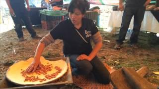 Visita a Chinampas en Xochimilco UVM Lomas Verdes