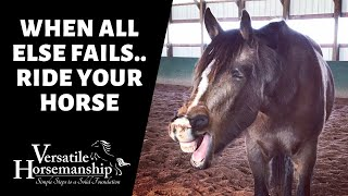🔴 WHEN ALL ELSE FAILS.. RIDE YOUR HORSE (live-stream) // Versatile Horsemanship