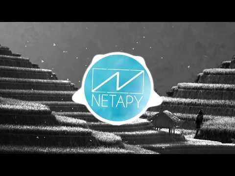 LFZ - Popsicle (Netapy Remix)
