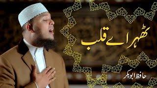 Thehar Ay Qalab | Naat Official Video | Hafiz Abu Bakar