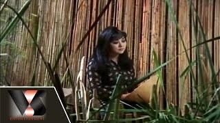 Người Đã Phai Lòng - Hương Lan - Vân Sơn Nụ Cười Và Âm Nhạc 7 | Vân Sơn 7