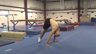 2015 08 24 PRESS HANDSTAND/PLANCHE WORK ON FLOOR - Gymnastics Bodyweight Fitness Calisthenics