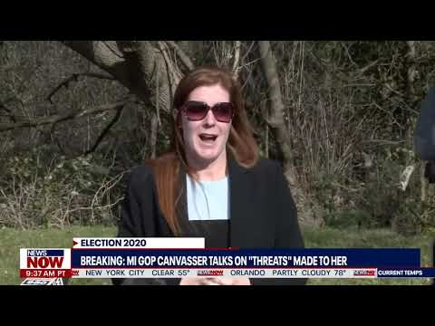 EXCLUSIVE: GOP Michigan Canvasser Speaks OUT After Feeling Threatened