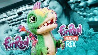 FurReal Friends - 'FurReal Munchin' Rex' Official Spot