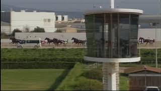 Vidéo de la course PMU GRAN PREMI DELS 5 ANYS
