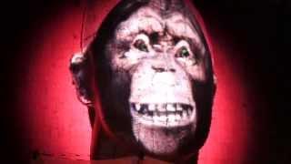 Robbie Williams Me And My Monkey - Stuttgart 2013 HD Video