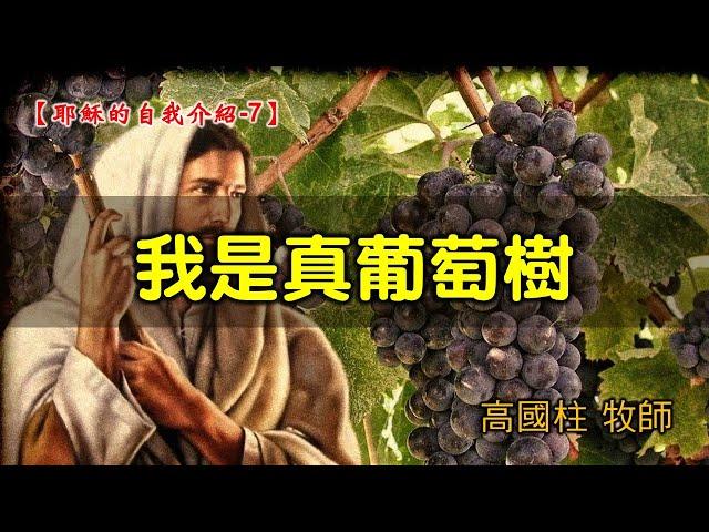 2021/09/12高雄基督之家主日信息-耶穌的自我介紹 (7)我是真葡萄樹