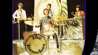 Watch Tremeloes I Will See You There video