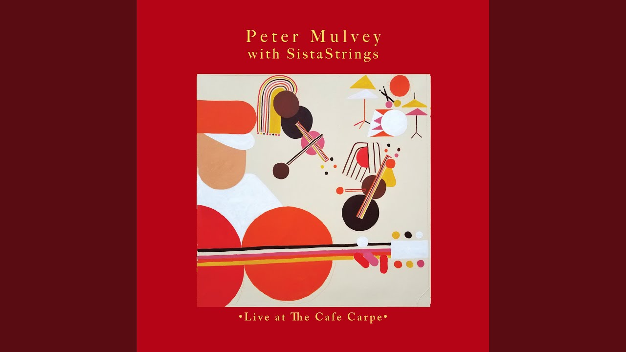 Peter Mulvey   Trapeze Swinger Chords   Chordify