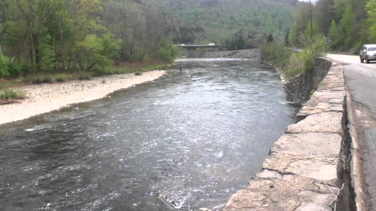 Fly fishing on the beaver kill river southeastern new for York river fishing report