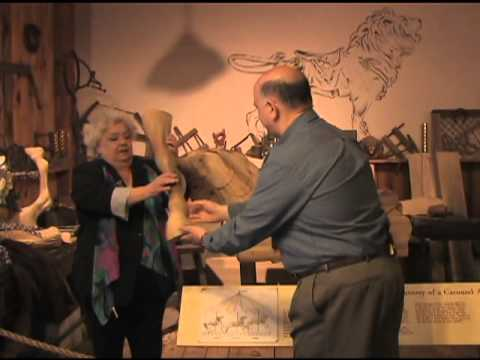 Day Trip To History  #21- New England Carousel Museum Part 1