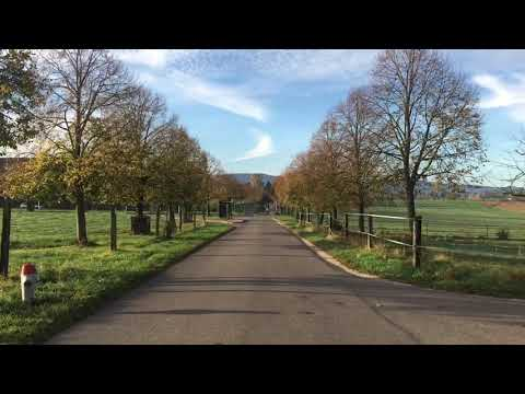 My Adventure to countryside of Basel with Elias - 25 Oct 2017