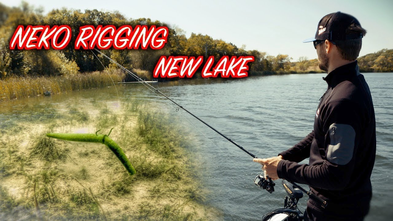 Patterning bass with the neko rig on new lakes youtube for Neko rig fishing