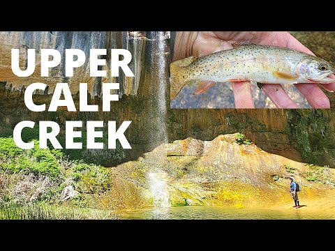 Fish, Hike & Camp, Upper Calf Creek (Falls), Grand Staircase-Escalante, Utah