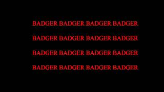 badger song lyrics