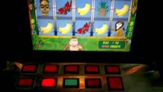 видео Igrosoft - игровые автоматы Игрософт играть бесплатно