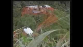 FARC EP .VS. CERDOS