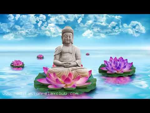 Music for Serenity: Buddhist Meditation, Peaceful Tibetan Music to Relax & Unwind