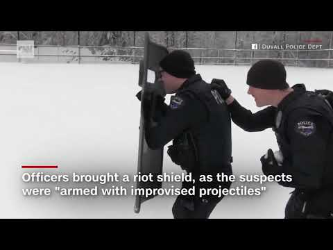 Doc Reno - Police mount tactical response to snowball fight