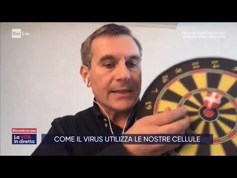 Come il virus utilizza le nostre cellule - La vita in diretta 17/03/2020
