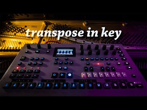TRANSPOSE the Analog Four IN KEY for Performance with Piano