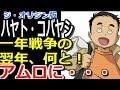 【ガンダムジオリジン】ハヤト・コバヤシが一年戦争の翌年に何と、アムロに・・・!?【マンガアニメ考察】