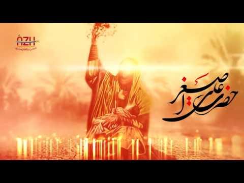 Asghar Ki Saari Umr | Ali Raza Rizvi 1438/2016 | OFFICIAL VIDEO