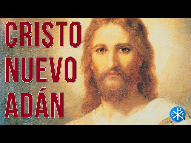 Cristo Nuevo Adán   Perseverancia - P. Gustavo Lombardo