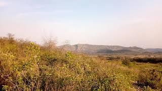 Dalwal mountains