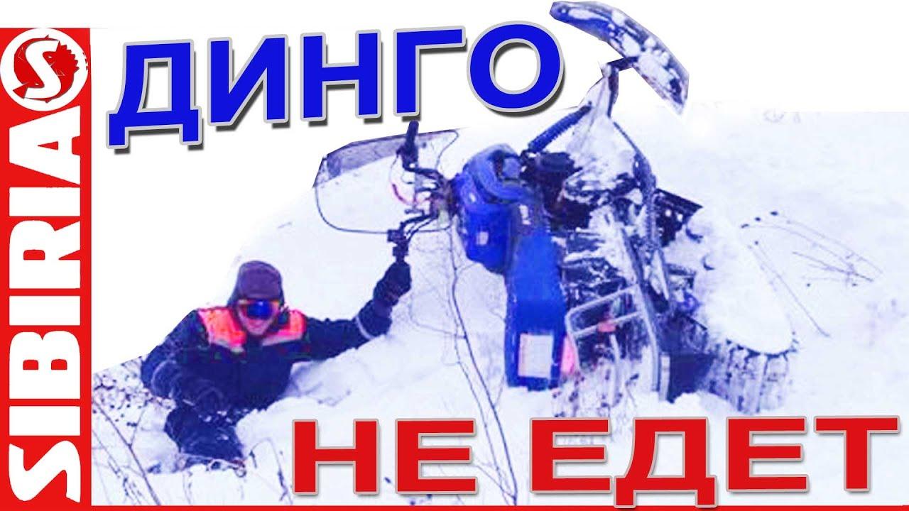 Динго НЕ ЕДЕТ. Динго Т150 по глубокому снегу с настом. Ирбис динго .