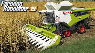 Żniwa kukurydziane Lexionem - Farming Simulator 19   #104