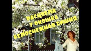 Расцвела под окошком  белоснежная вишня - Поёт Юлия Боголепова