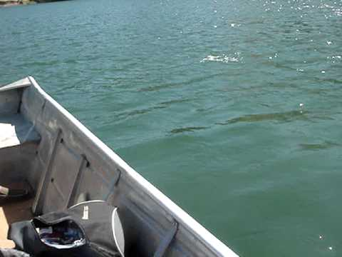 Lake del valle fishing at it 39 s finest youtube for Lake del valle fishing report