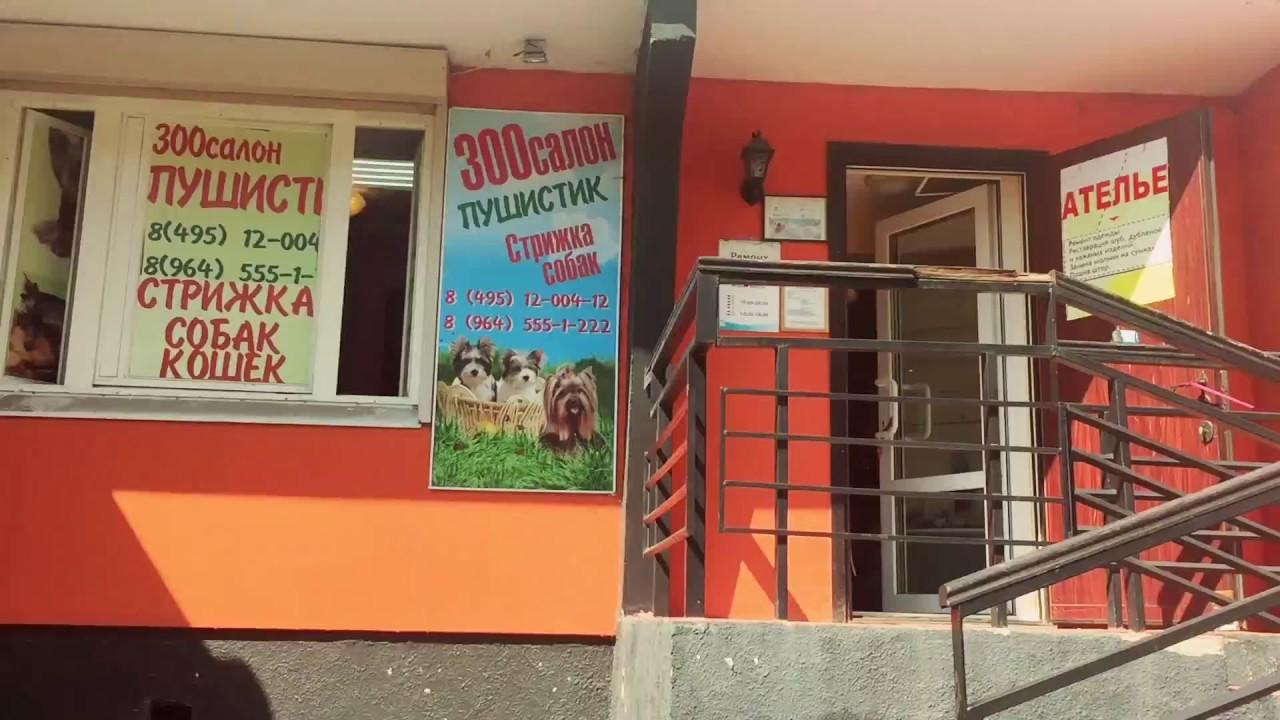 Интернет-магазин «четыре лапы» предлагает выгодно купить домики и лежаки. Всех пород и размеров с доставкой на дом по москве и московской области. Авва fresh корм для щенков мелких пород беззерновой на основе.
