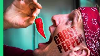 Download Spicy Indian Food Challenge! GHOST PEPPER Chutney and the SPICIEST Street Food in Delhi, India! Mp3 and Videos